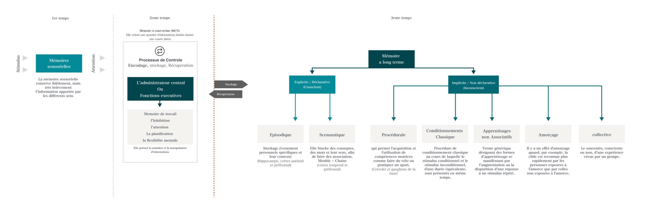 modèle modal de la memoire psychologie cognitive-v1